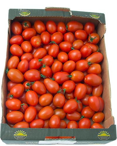 tomater-sunnana-Flavorino-lada-IMG_4511