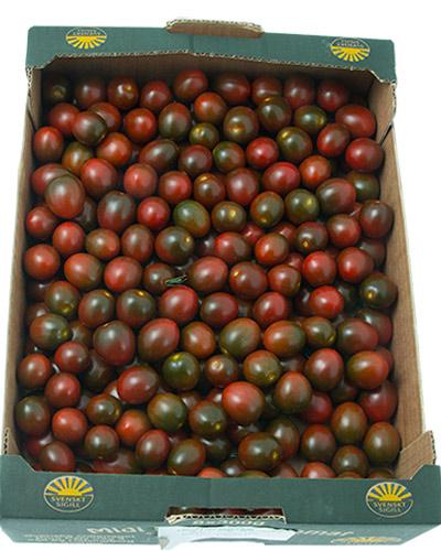tomater-sunnana-Mini-kumato-lada-IMG_4502