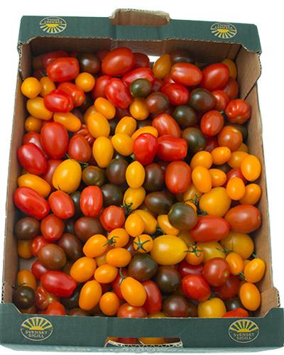 tomater-sunnana-mixlada-losv-MG_4523