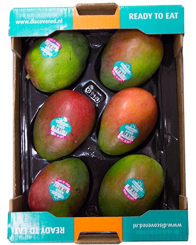 mango-Kent-6st-Discovered-IMG_2049