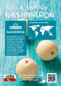 Discovered_Nashi