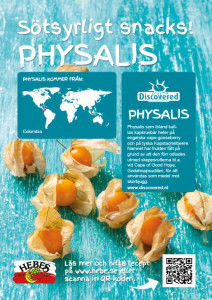 Discovered_Physalis