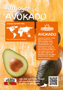 Discovered_avocado