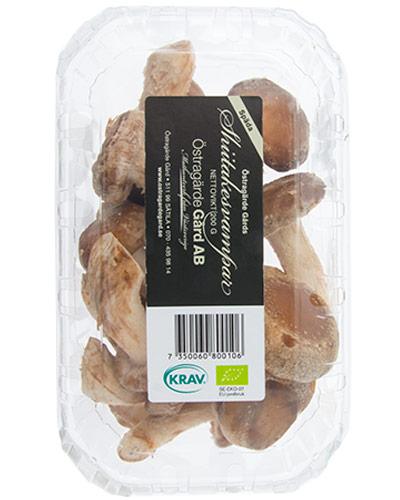 EKO-shiitakesvampar-200g-ostragarde-gard-framsidan-IMG_5094