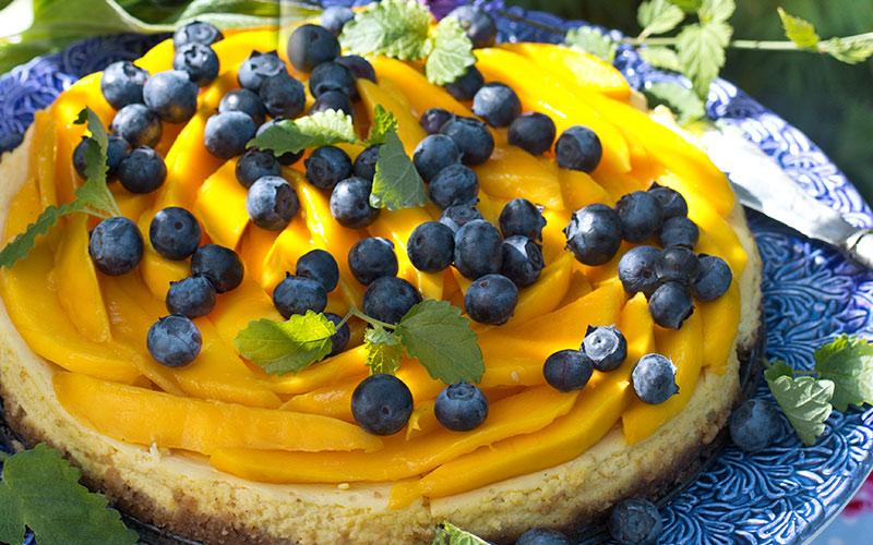 mangocheesecake-m-blabar-bred