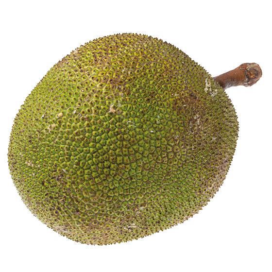jackfrukt-2-560x560
