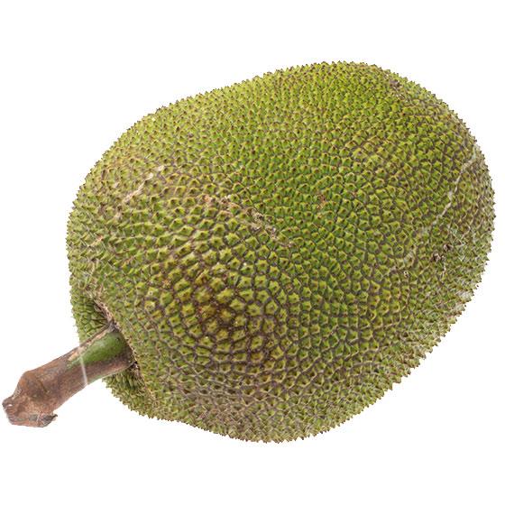 jackfrukt-560x560