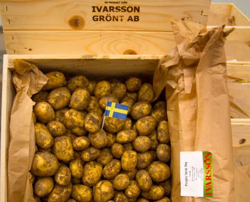 sv-farskpotatis-ted-ivarsson-lager-bred