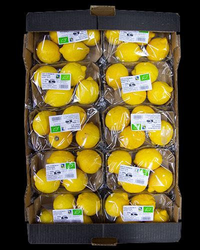 Citroner-eko-4-pack-