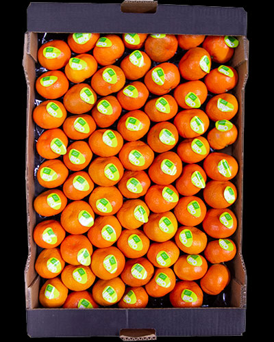 Clementiner-eko-Nadrocott-1-lag-