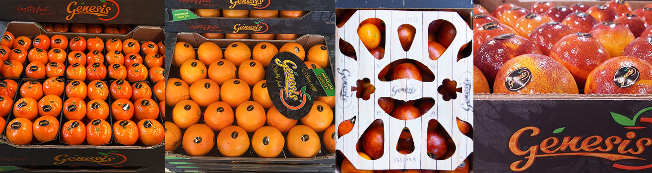 genesis-citrus-aplelsiner-clementiner